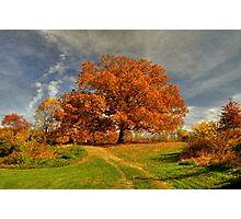 Autumn Picnic On The Hill Photographic Print