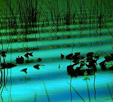 Tranquility by Susanne Van Hulst