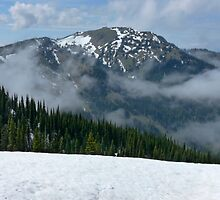 Hurricane Ridge by Lucinda Walter