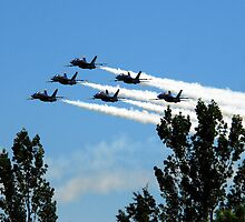 The Blue Angels by Terrell Bird