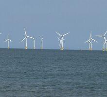 Wind Farm at Great Yarmouth, UK by ZenVikram