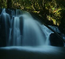 Upper Lilydale Falls by michellerena