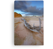 The Gnarled & Colourful World of Mungo Metal Print