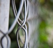 fence bokeh by Ashley P