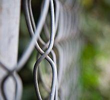 fence bokeh by Ashley P
