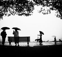 """you can stand under my umbrella"".... by Russ Styles"