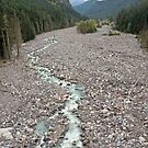 Nisqually River, Glacial Runoff River in Mount Rainier National  by Stacey Lynn Payne