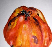 Italian Tomato by nancyballard