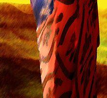 land hues & kimono colors by banrai
