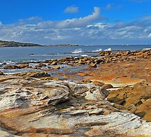 Kurnell by Terry Everson