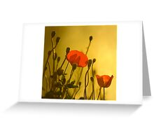 Sunny Afternoon Greeting Card