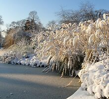 Icy  Lake and Snow in Greenwich Park by PevPhot