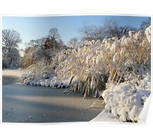 Icy  Lake and Snow in Greenwich Park Poster
