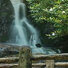 Laurel Falls by Jason Vickers