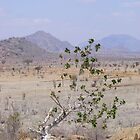 Between Two Mountains Tsavo East National Park by MrEyedea
