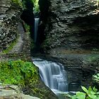 Watkins Glen by marilynwood