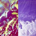 this is love by kohii