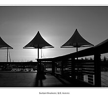 Shade Sail Sunrise by Jaime Dormer