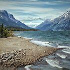 Yukon Alaska by Margaret Metcalfe