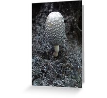 Mushroom on Magnolia Greeting Card