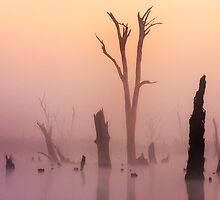 Lake Mulwala impression 3 by Hans Kawitzki