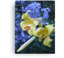 Lilies and Campanula Canvas Print