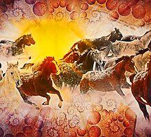 Horses by akshay moon