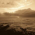 Sepia Sunrise  by Mark Walton