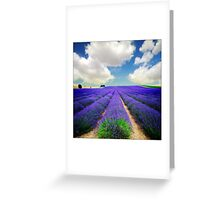 Lavender Field - (3a) Greeting Card