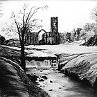 Fountains Abbey by Emma Tiley