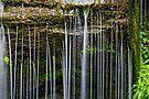 Rexford Falls - Summer - Detail by Stephen Beattie