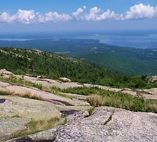 Cadillac Mountain by Dandelion Dilluvio