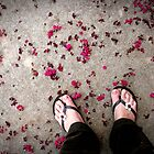 petals by Ginger
