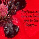 Perfume & incense by sarnia2