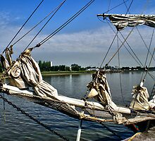 Sails down - Tall Ships Race - Antwerp Belgium by Gilberte