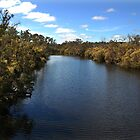 Frankland River by Eve Parry