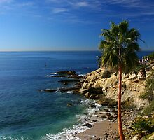 Laguna Beach, Ca by mikebless