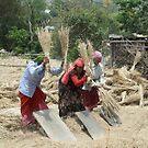 Harvest time. Budol, Nepal by John Callaway