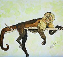 Debonair Monkey Relaxing High in a Tree by Kelly ZumBerge