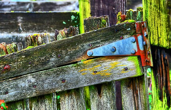 Great Old Fencing by Jennifer Hulbert-Hortman