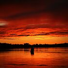red water. anderson inlet. victoria by tim buckley | bodhiimages