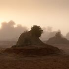 Mungo mounds in fog by Nick Pitsas