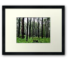 After effects Framed Print
