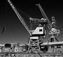 Cockatoo Island Cranes by Werner Padarin