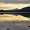 Dusk At Lake Menteith, Scotland. by Aj Finan