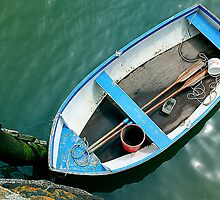 Small boat with paddles by Lee Van Hallam