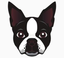boston terrier by theartofdang