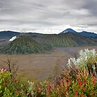 Sunrise of Mount Bromo by DJBPhoto