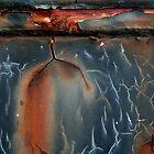 Heat Lightning by Peter Baglia