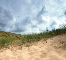 Dutch dunes. by Hetty Mellink